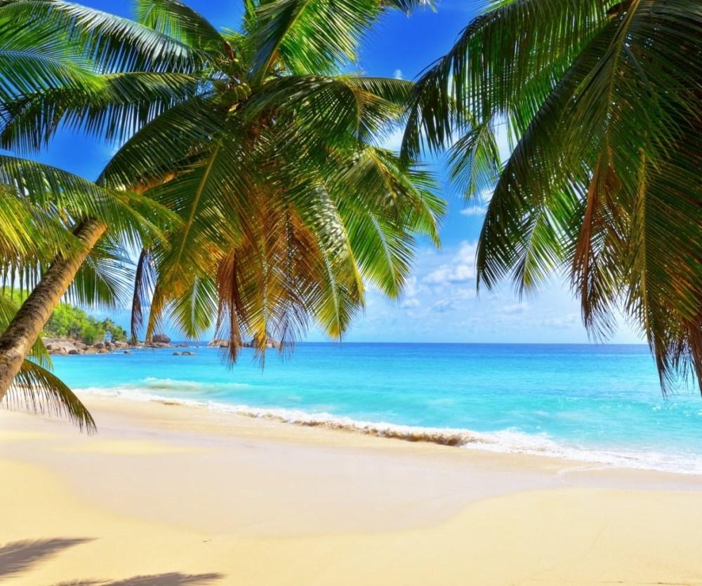 Offerte Seychelles